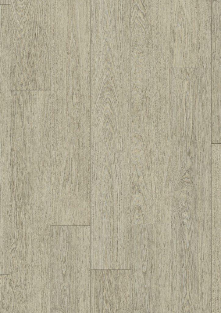 classic plank 4
