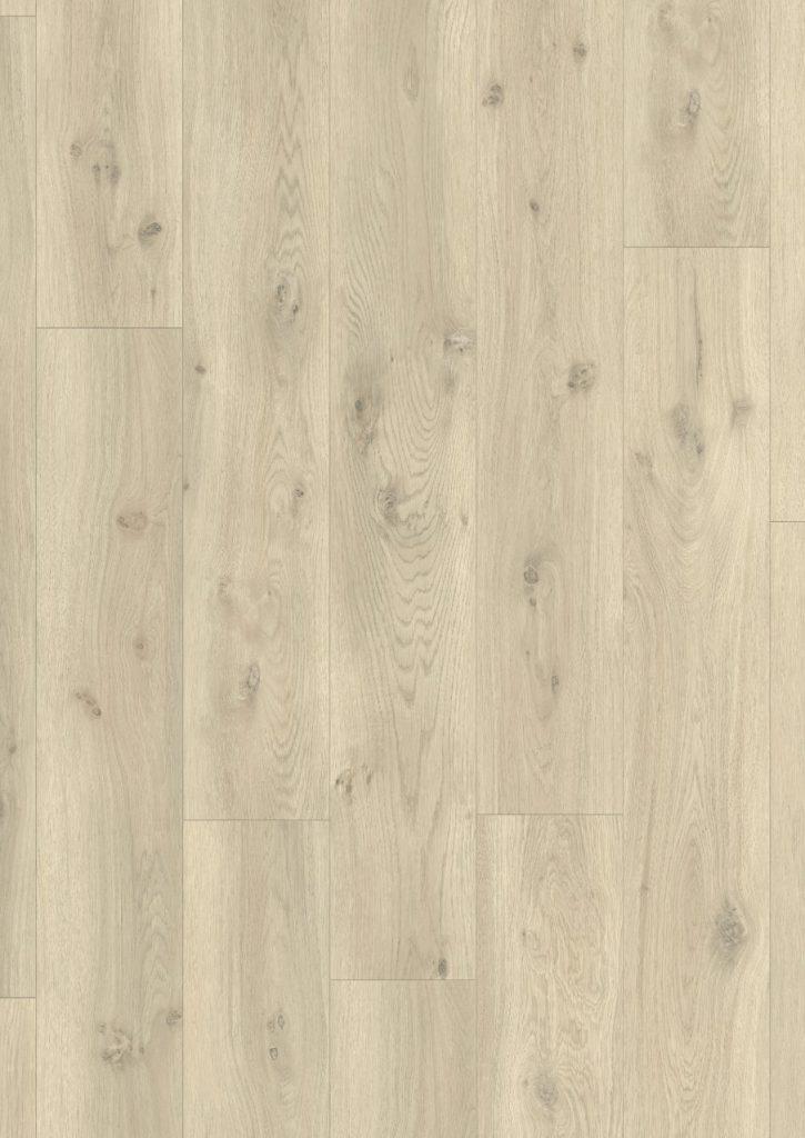 classic plank 1