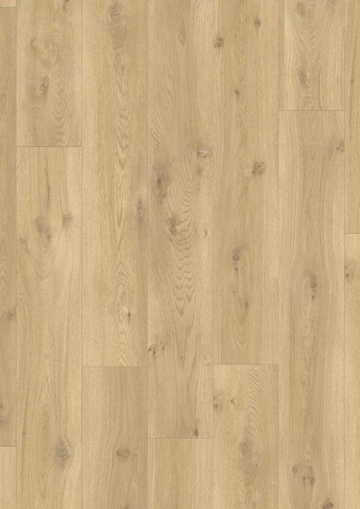 classic plank 6
